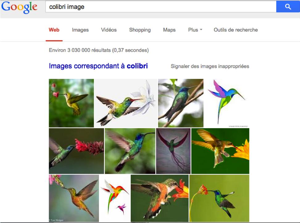 Google Colibri a été conçu pour analyser les requêtes à partir des synonymes, ainsi, on peut taper colibri photo et colibri image